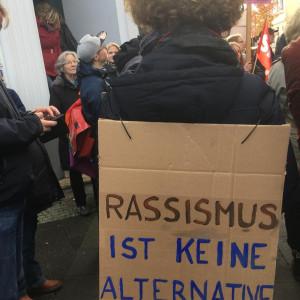 "AfD-Gegendemo 27.10.2018, Kreative Plakate - ""Rassismus ist keine Alternative!"""
